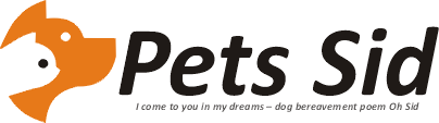Pet Sid